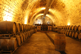 Israel wine and boutique vineyards