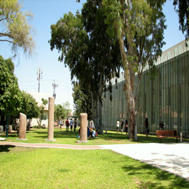 The Interdisciplinary Center Herzliya